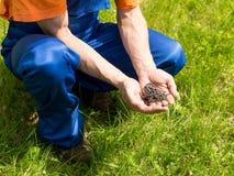 O trabalhador manual no equipamento de trabalho azul guarda uma pilha dos parafusos Fotos de Stock