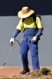 O trabalhador pulveriza plantas no jardim da cidade Fotografia de Stock
