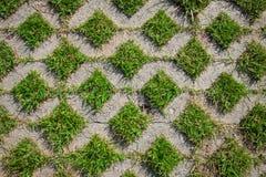 O trajeto de pedra da caminhada do bloco no parque Imagem de Stock Royalty Free