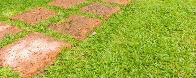 O trajeto de pedra da caminhada do bloco no parque com grama verde Imagens de Stock Royalty Free