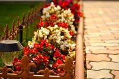 O trajeto de pedra no jardim flanqueou com flores coloridas, fundo da queda Fotografia de Stock