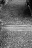 O trajeto do jardim do ` s do recurso em Khao imagem preta & branca de Yai Fotografia de Stock Royalty Free
