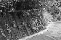 O trajeto do jardim do ` s do recurso em Khao Yai Fotos de Stock