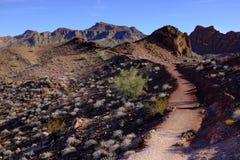 O trajeto no deserto conduz longe Fotografia de Stock