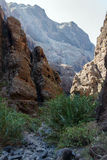 O trajeto no desfiladeiro da montanha Imagens de Stock