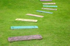 O trajeto no jardim. Imagens de Stock Royalty Free