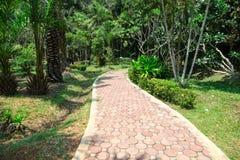 O trajeto no jardim Foto de Stock Royalty Free