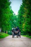 O transporte do cavalo para atravessar o parque em Catherine Palace em St Petersburg, Rússia fotos de stock royalty free