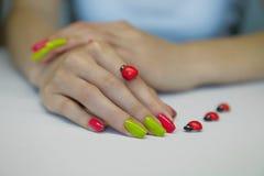 O tratamento de mãos das mulheres bonitas Fotos de Stock Royalty Free