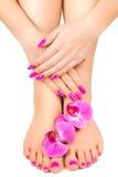 O tratamento de mãos e o pedicure cor-de-rosa com uma orquídea florescem Fotografia de Stock