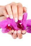 O tratamento de mãos francês da mulher Imagens de Stock Royalty Free