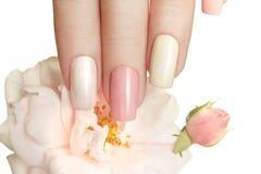 O tratamento de mãos pastel com aumentou Fotos de Stock