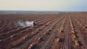 O trator aéreo polvilha adubos químicos no campo da opinião da parte traseira da exploração agrícola da noz e da avelã vídeos de arquivo