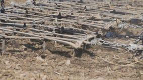 O trator ara o campo com os arados antes de semear Maquinaria agr?cola em arar o campo vídeos de arquivo