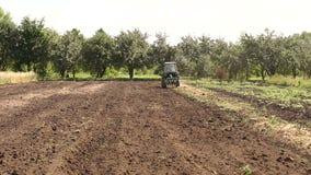 O trator ara o campo, cultiva o solo para semear a gr?o filme