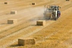 O trator recolhe o feno seco no campo de exploração agrícola e faz pacotes de feno Foto de Stock Royalty Free
