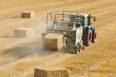 O trator recolhe o feno seco no campo de exploração agrícola e faz pacotes de feno Imagem de Stock