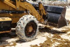O trator remove a alga da praia fotos de stock