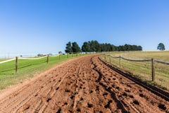 O treinamento do cavalo de raça segue a paisagem Fotografia de Stock