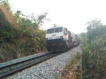 O trem chega Foto de Stock