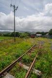 O trem coberto de vegetação segue a paisagem Foto de Stock