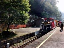 O trem de Sagano-Torroko Fotos de Stock Royalty Free