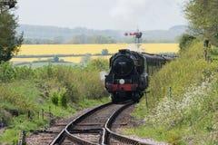 O trem do vapor aproxima a estação Fotografia de Stock