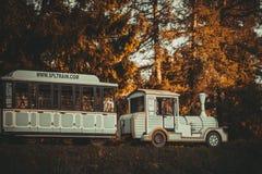 O trem no parque de Pavlovsk fotos de stock royalty free
