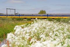 O trem passa o pasto em Hoogeveen, Países Baixos Imagem de Stock Royalty Free