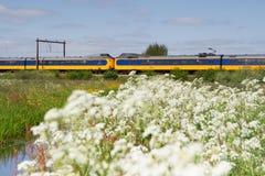 O trem passa o pasto em Hoogeveen, Países Baixos Fotografia de Stock