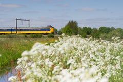 O trem passa o pasto em Hoogeveen, Países Baixos Imagens de Stock