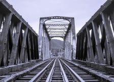 O trem segue a ponte Fotografia de Stock