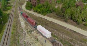 O trem ? um recipiente de primeira classe, uma estrada de ferro na floresta, um trem de mercadorias em um lugar colorido vídeos de arquivo