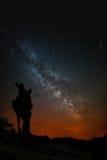 O tronco de uma árvore, de uma Via Látea e de um meteoro inoperantes Imagem de Stock Royalty Free