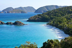 O tronco late nós Virgin Islands fotos de stock
