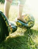 O 'trotinette' bonde baseado giroscópio da roda dupla é chamado igualmente uma roda de equilíbrio esperta Fotografia de Stock Royalty Free