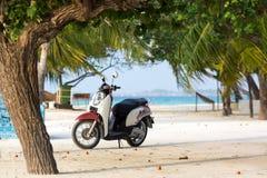 O 'trotinette' original do projeto está na praia sob a palmeira Foto de Stock Royalty Free