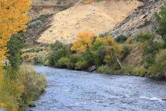 O Truckee River Imagens de Stock
