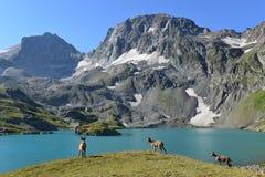 O tur caucasiano ocidental Foto de Stock Royalty Free
