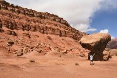 O turista admirado antes de uma rocha desproporcionado Fotografia de Stock