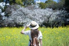 O turista da mulher deve apreciar viajar no campo de flor durante a esta??o de mola imagens de stock royalty free