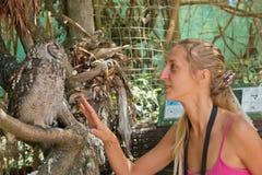 O turista fêmea comunica-se com a coruja fotografia de stock