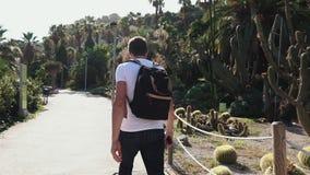 O turista masculino está andando no parque de surpresa do cacto em Barcelona no dia ensolarado video estoque