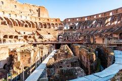 O turista que olha o Colosseum ou o coliseu famoso, igualmente conhecido como Flavian Amphitheatre, é um anfiteatro oval no centr imagem de stock royalty free
