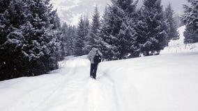 O turista vai na neve vídeos de arquivo