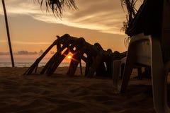 O twinkie e o alm da praia do por do sol enraízam, Sri Lanka fotografia de stock royalty free