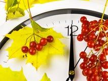12 O-` Uhr Ziffernblatt, Gelbblätter und Viburnum Stockfotografie