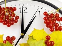 1 O-` Uhr Ziffernblatt, Gelbblätter und Viburnum Stockfotos