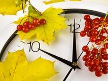 10 O-` Uhr Ziffernblatt, Gelbblätter und Viburnum Stockfotos