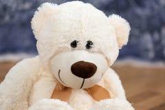 O urso de peluche de sorriso brinca o assento na terra fotos de stock